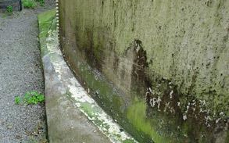 Water penetration and algae formation along this corroded tank base